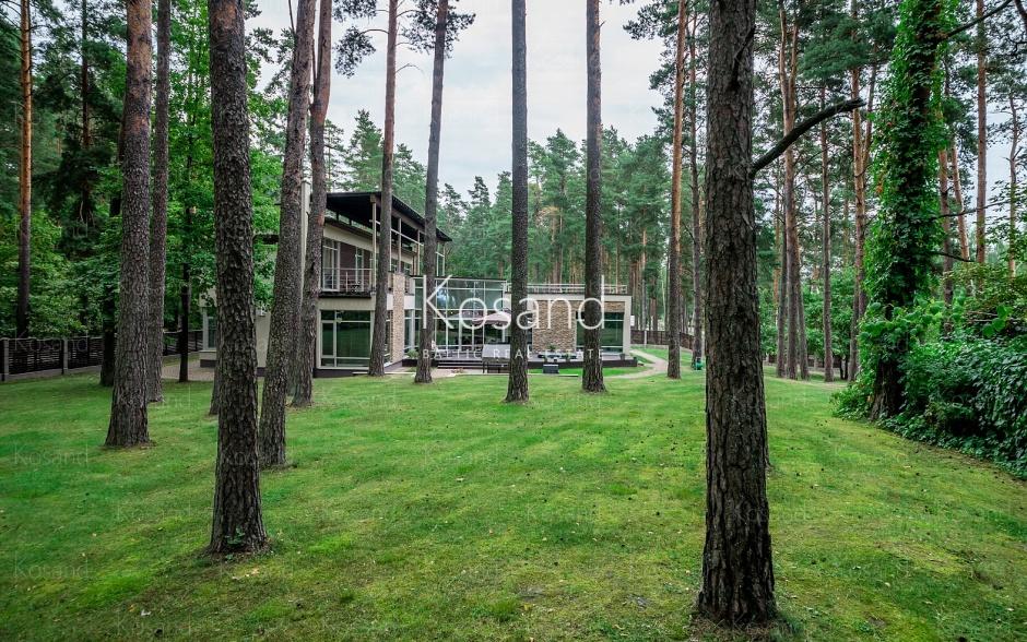 Аренда современной виллы в сосновом лесу рядом с озером